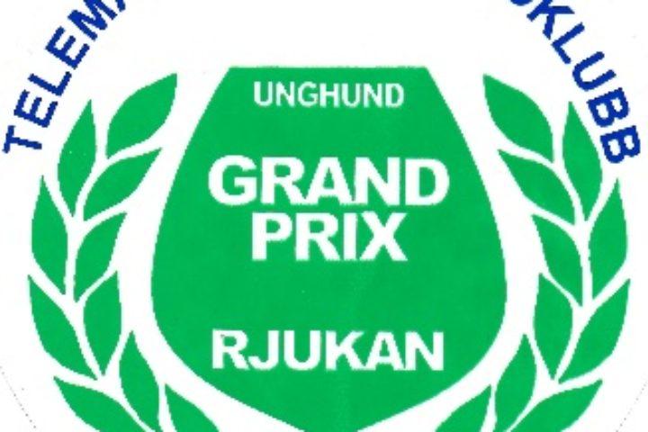 Unghund Grand Prix