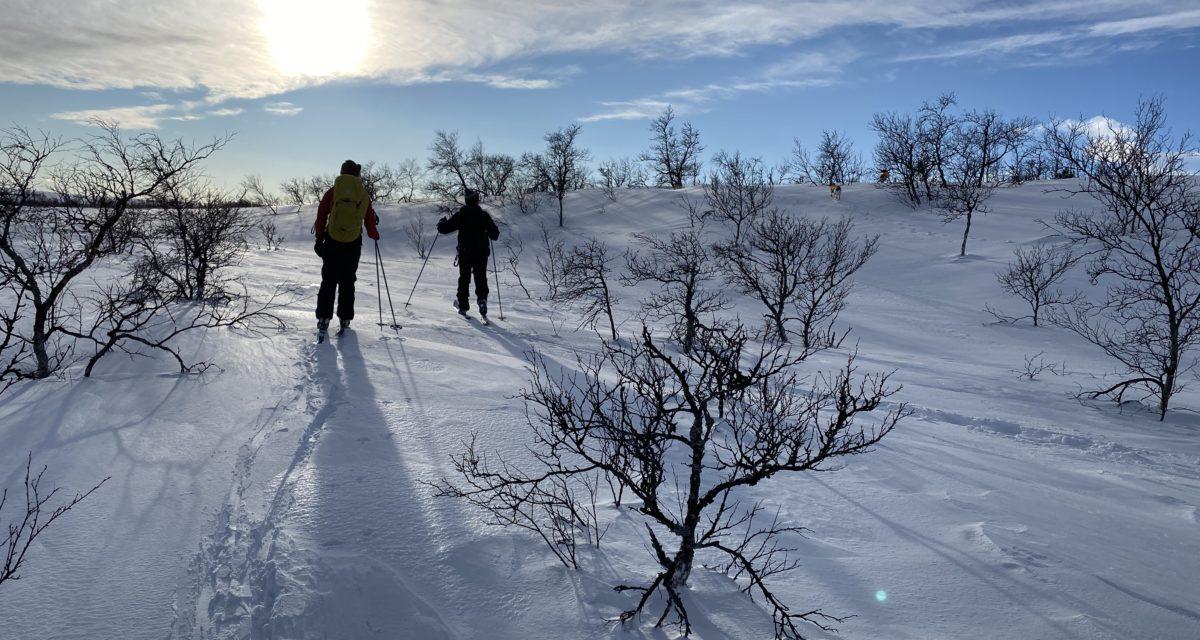 Treningssamling i Engerdal Statsallmenning 26-28 februar – AVLYST