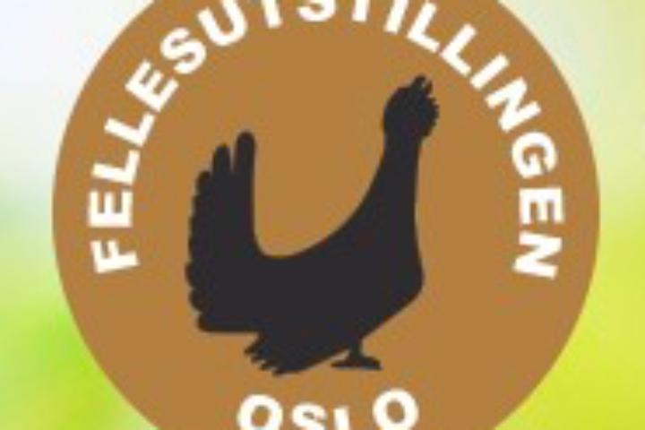 Fellesutstillingen – Oslo – 2021