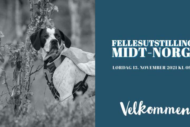 Fellesutstillinga Midt-Norge 13.11.2021